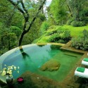 An infinity pool in the forest