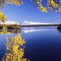 Autumn in Lapland, Sweden