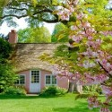 Cherry Blossom Cottage, Lovely House