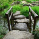 Beautiful Stepping Stones