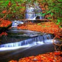 Autumn, Grogan Creek Waterfall, North Carolina, USA