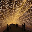 Tunnel of lights , Japan