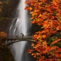 Multnomah Falls , Oregon , USA