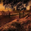 Sunrise , Derrymore , Northern Ireland