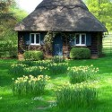 Thatched Roof Cottage, Cotswold, England