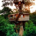Wonderful TreeHouse in Brazil