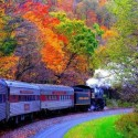 Wonderful View of Autumn Train