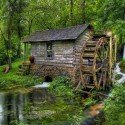 Reed Springs Grist Mill