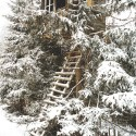 Tree House in Snow