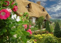 Beautiful view of Thatched Cottage, village of Barrington, England