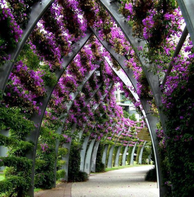 South Bank Parklands in Queensland, Australia