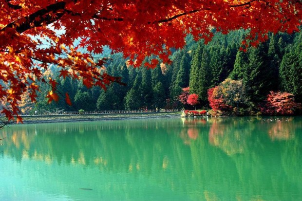 Autumn view, Yamanashi Ken, Japan