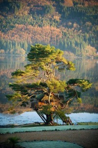 TreeHouse on Loch Goil in Scotland