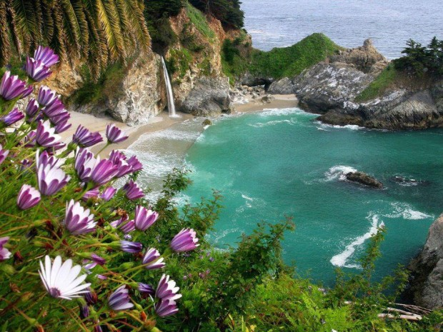 The McWay Falls, California State Park, USA