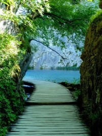 Amazing Path in Plitvice Lakes National Park , Croatia