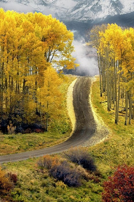 Aspen Road, Boulder, Colorado, USA