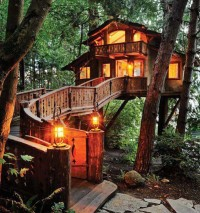 Beautiful Tree-House, Santa Monica, California, USA