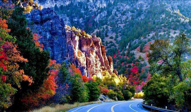 Canyon Road , Mexico