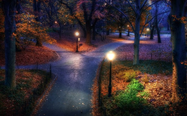 Central Park in the Fall , New York , USA