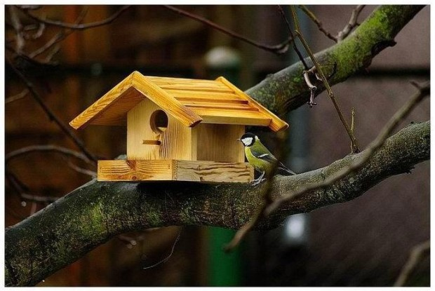 Lovely Bird House