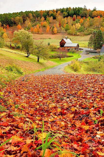 Sleepy Hollow Farm , Woodstock , Vermont , USA