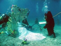 Unique Wedding , Marriage in the Deep Ocean