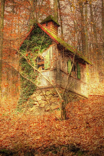Forest Cottage, Herbst, Germany