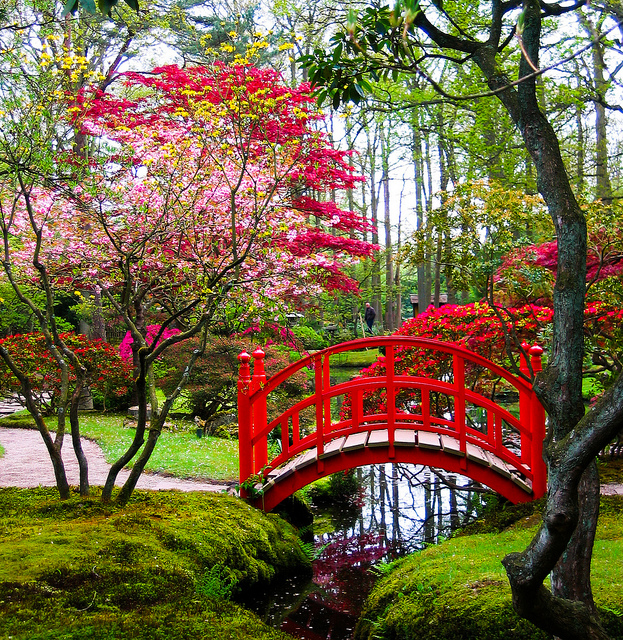 Japanese garden in Clingendael Park, The Hague, Netherlands