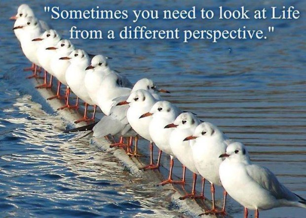 Sometimes you need to look at Life from different perspective