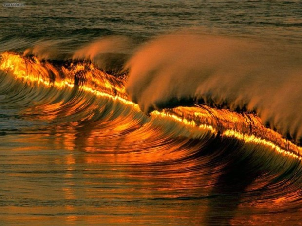 Golden Wave at sunset at Puerto Escondido , Mexico