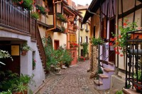 Cobblestone Street , Alsace , France