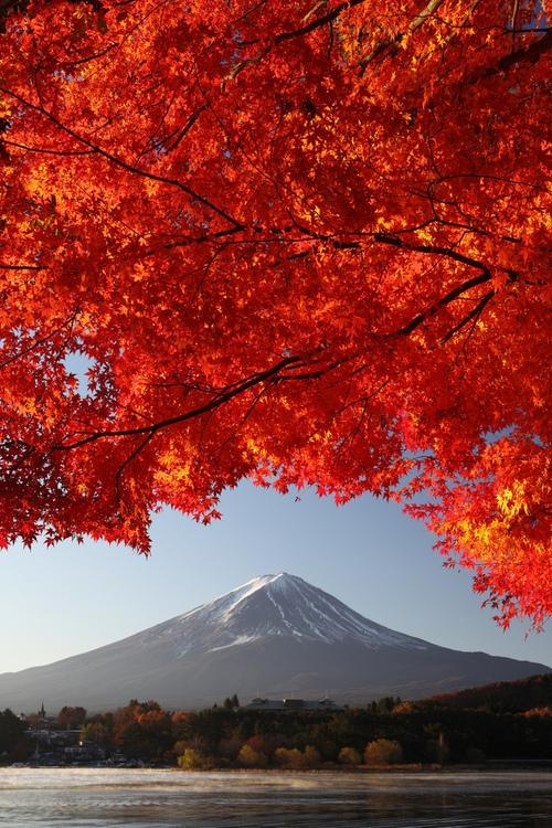 Autumn, Mt. Fuji, Japan