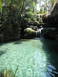 Natural swimming pool, Isalo national park, Madagascar