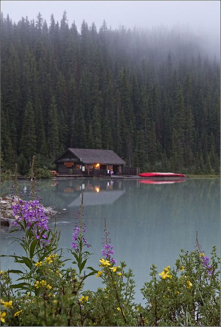 Cabin among the pines, Lake Louise, Banff National Park, Canada