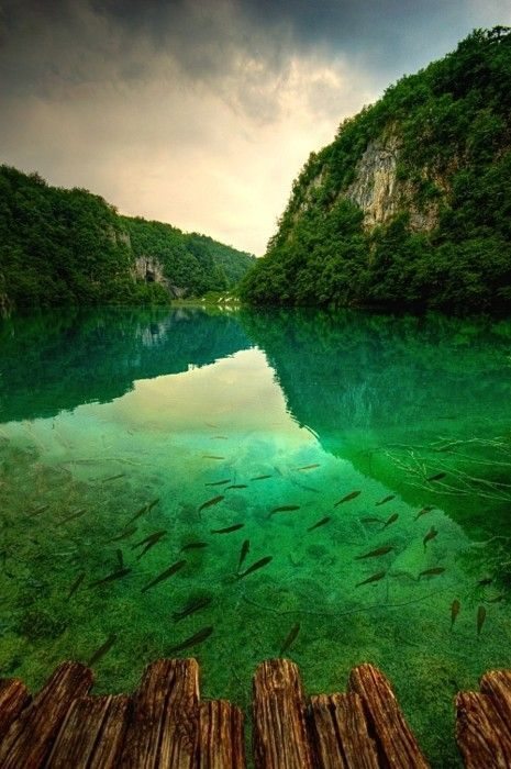 Plitvice Lakes National Park, Croatia. Green waters and ribbons of waterfalls in dense vegetation.