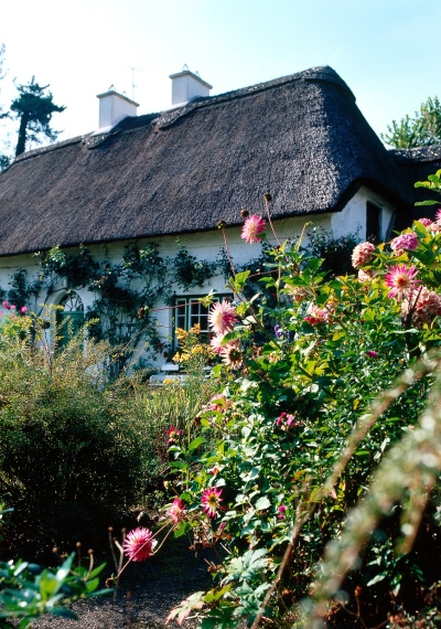 Cottage in Stradbally, Co Waterford, Ireland