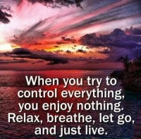 When you try to control everything, you enjoy nothing. Relax, breath, let go and just live
