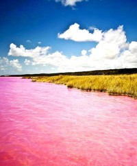 The Pink Lake, Lake Retba, Senegal