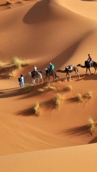 The Sahara, Egypt