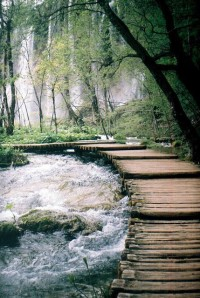 Path in Plitvice Lakes National Park, Croatia