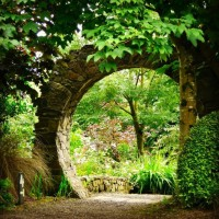 Knockpatrick Gardens, Co Limerick, Ireland